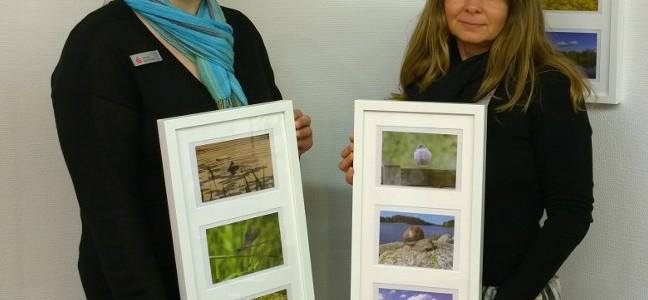 Fotowettbewerbs-Postkarten jetzt erhältlich